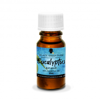 Eucalpytus Blue Mallee Essential Oil 10ml bottle